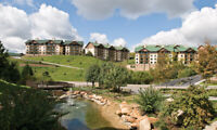 Spring Vacation.-Wyndham Smoky Mts. 2 Bdrm. Deluxe 4 nts May 31/June 4 Occ. 8