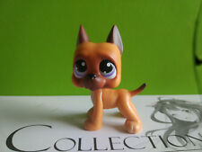 Littlest Pet Shop Brown Orange Great Dane Dog Blue Eyes Rare LPS233
