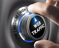 Unlimited, HIGH QUALITY VISITORS to your website for 1 month!