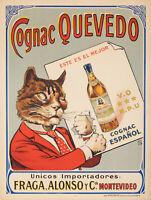 Affiche Originale - Cognac Quevedo - Espagnol - Chat - alcool- 1920