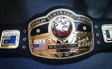 NWA Domed Globe World Heavyweight Championship Wrestling Replica Title Belt 2mm
