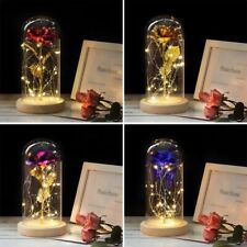 Rose In A Glass Beauty And The Beast Enchanted Dome LED Light Lamp Decor Gift