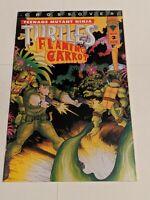 Teenage Mutant Ninja Turtles Flaming Carrot #2 December 1993 Image Comics TMNT
