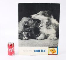 KODAK FILM POSTER FEATURING DOGS, CARDBOARD MOUNT, 1962/cks/208396
