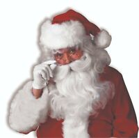 Forum Novelties Deluxe Santa Wig Adult Beard Halloween Costume Accessory 23074