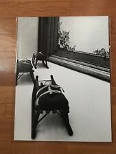 Original photo exhibition JOSEPH BEUYS napoli 1978 large size