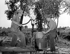 Farmers Pumping Water - 1939 - Vintage Photo Print