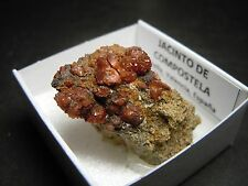 JACINTO DE COMPOSTELA Red Quartz - Chella - CAJITA - SPAIN MINERAL BOX 4x4 B213