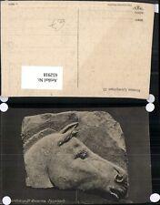 652918,Paardekop El amarna Egyptisch Egypt Ägypten