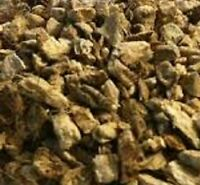 Organic Calamus Root Acorus calamus herb herbal 1 oz