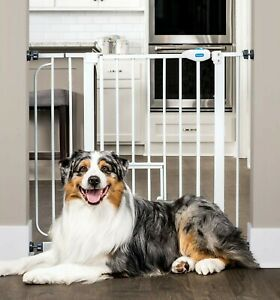 Carlson Extra Wide Walk Through Pet Gate with Small Pet Door 4-Inch Extension