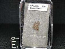 NWA595 Official Achondrite Brachinite Meteorite - 0595-0001 - THIN SECTION-RARE