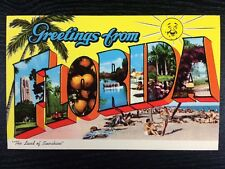 """""""Greetings From Florida"""" The Land of Sunshine State Large Letter Chrome Postcard"""