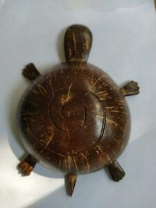 Handmade  wonderfully home décor  real Coconut Shell stuffed natural Turtle