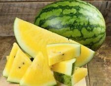 Watermelon (Yellow Sweet Gem) Garden Vegetable seed 1/4 oz prepack