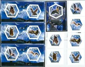 BATS animals SET 6 hexagon stamps + 4 s/s Tchad 2014 MNH #tchad2014-107s IMPERF