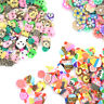 DIY Slime Accessory Fruit Polymer Clay Antistress Jelly Mud Nail Art Sticker LC