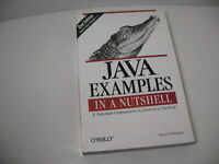 JAVA EXAMPLES IN A NUTSHELL Tutorial Companion Programming Softback Book NEW