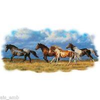 Rearing Stallion Horse HEAT PRESS TRANSFER for Shirt Tote Sweatshirt Fabric #247
