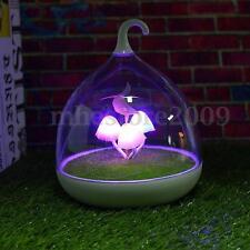 Mushroom LED Touch Sensor Dimmer Night Light Portable Garden Bedroom Desk Lamp