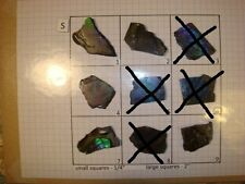 S Group Blue Ammolite Ammonite Your Choice (Pick One) Ready to Make Jewelry
