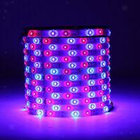 Strisce LED Con Telecomando A 44 Tasti Decorazioni Per Interni Per Interni Spina