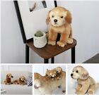 "With Pet Golden Retrieve Premium Plush Rag Real Stuffed Dog Doll 12"" Cute Design"