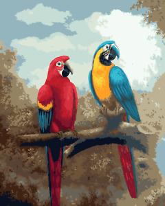 Large Paint By Numbers Kit 50*40cm A020 Fun Art Decor Parrots AU