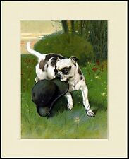 STAFFORDSHIRE BULL TERRIER AND BOWLER HAT GREAT DOG PRINT MOUNTED READY TO FRAME