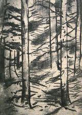 """Artur Erdle 1889-1961 Düsseldorf / Radierung """"Tannenwald"""" 1923 Rumbeck Arnsberg"""