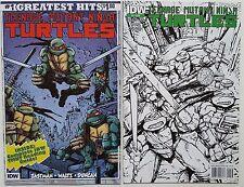 Teenage Mutant Ninja Turtles TMNT Vol 5 #1 & 2 Set NM Comics Eastman IDW 2011