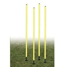 Champion Outdoor Agility Pole Set APSET Agility Pole NEW