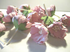 5 WILD ROSES FLOWERS SCRAPBOOKING / CRAFT EMBELLISHMENTS LL