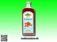 Likör - Eisbeer (fruchtig-minzig) --- 1 Flasche 0,7 Liter, 24% Vol.