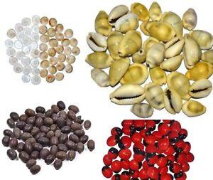 Combo of Red Gunja Beads, Kamal Gatte, Yellow Kaudi and Gomti Chakra 11 pcs each