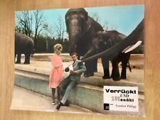 Verrückt und zugenäht (Kinofoto '62) - Vivi Bach / Peter Kraus / Elefanten