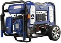 Ford Portable Generator Dual Fuel Gasoline/Propane Powered Electric/Recoil Start