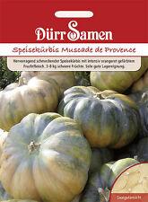 Speisekürbis Muscade de Provence Cucurbita moschata 6 Korn DürrSamen