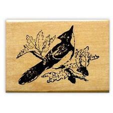 mounted bird rubber stamp, BLUE JAY, Autumn, acorns, Fall #9
