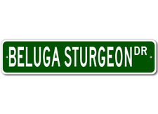 BELUGA STURGEON  Street Sign ~ Fishing ~ Great Fish Sig