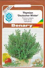 Thymian Deutscher Winter mehrjährig aromatisch ca.600 Pflanzen Benary Samen
