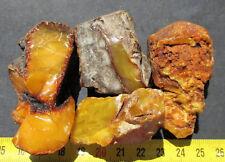 Natural Genuine Butterscotch Egg Yolk Baltic Amber Stones 81g.