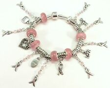 PINK RIBBON Breast Cancer Awareness Silver European Charm Bracelet Cat's Eyes