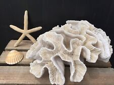 New Nautical Gisela Graham Frill Coral Resin Ornament Decoration