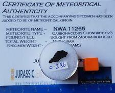 NWA 11265 - CV3 Carbonaceous Chondrite Meteorite - Partial Slice 0.286 grams