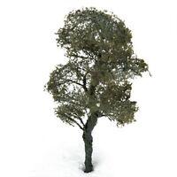 4,72 Zoll Landschaft Landschaftsmodell Baum Pinus sylvestris GY