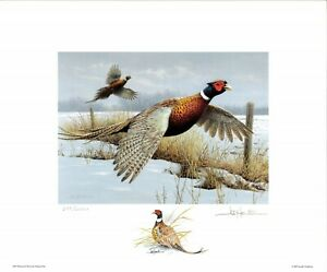 MINNESOTA 2007 STATE PHEASANT STAMP PRINT  by Joe Hautman color remarque +2stmp