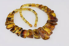 All Beads with FOSSIL INSECTS Genuine BALTIC AMBER Choker c140225-2
