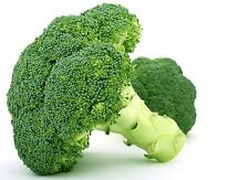 1g (app.350) broccoli seeds GROENE CALABRESE cancer fighting food Highly dietary