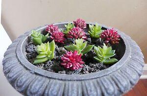 12 Pcs Artificial Grass Miniature Succulents Red Green Lotus Stone (M25)